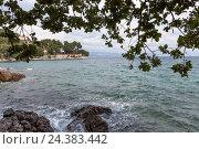 Купить «At the Croatian Adriatic Sea», фото № 24383442, снято 21 августа 2018 г. (c) mauritius images / Фотобанк Лори