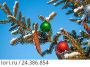 Елка с новогодними игрушками и шишками на фоне синего неба. Стоковое фото, фотограф Владимир Косьяненко / Фотобанк Лори