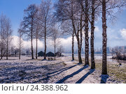 Купить «Germany, Bavaria, Upper Bavaria, Tölzer Land (area), Schlehdorf by the Kochelsee, lakeside of the Kochelsee», фото № 24388962, снято 23 июля 2018 г. (c) mauritius images / Фотобанк Лори