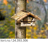 Купить «Birdhouse in the tree», фото № 24393306, снято 28 мая 2018 г. (c) mauritius images / Фотобанк Лори