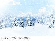 Купить «Зимний пейзаж - заснеженные деревья в солнечном свете», фото № 24395294, снято 5 января 2016 г. (c) Евгений Ткачёв / Фотобанк Лори