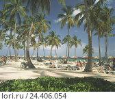 Купить «The Dominican Republic, Punta Cana, hotel beach, deck chairs, bathers, beach, palms, sunshades, couches, tourists, vacationers, vacation, rest, sea,», фото № 24406054, снято 28 января 2009 г. (c) mauritius images / Фотобанк Лори