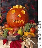 Купить «Halloween, pumpkin, look, fruit, vegetables, Still life autumn, season, Thanksgiving Day, fruits, yield, harvest, Cucurbita, grapes, pears, apples, walnuts...», фото № 24412278, снято 27 ноября 2008 г. (c) mauritius images / Фотобанк Лори