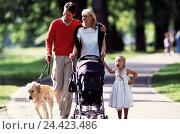 Купить «Family, baby carriage, dog, walk, park, parents, child, Golden retriever, pet, animal, companion, go for of a walk, go walk, excursion, leisure time, common figureistic,», фото № 24423486, снято 14 декабря 2000 г. (c) mauritius images / Фотобанк Лори