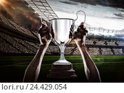 Купить «Composite image 3D of cropped hand of athlete holding trophy», фото № 24429054, снято 27 июня 2019 г. (c) Wavebreak Media / Фотобанк Лори