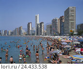 Купить «Spain, Alicante, Costa Blanca, Benidorm, beach, bathers, mass tourism Comunidad Valenciana, tourism centre, holiday resort, seaside resort, place, holidays...», фото № 24433538, снято 22 ноября 2002 г. (c) mauritius images / Фотобанк Лори