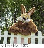 Купить «Garden fence, Easter bunny, head rest on, half portrait, hare, Easter, Easter feast, child's faith, lining, panels, costume, hare's costume, humor, fun, funnily, friendly, fence, garden, outside», фото № 24444570, снято 15 октября 2003 г. (c) mauritius images / Фотобанк Лори