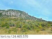 Горный пейзаж в долине привидений в окрестностях Алушты. Крым (2016 год). Стоковое фото, фотограф Максим Мицун / Фотобанк Лори