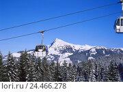 Купить «Austria, Tyrol, Kitzbuehel, skiing area, Kitzbüheler horn, gondola trajectory, winter Kitzbüheler alps, mountains, mountain landscape, mountainous region, cable car,», фото № 24466278, снято 26 сентября 2005 г. (c) mauritius images / Фотобанк Лори