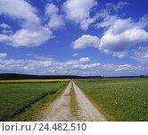 Купить «Germany, Bavaria, Feldlandschaft, Track, cloud heavens,  Landscape, meadows, fields, landscape, way, grit way, exactly, long, wideness, distance, been...», фото № 24482510, снято 18 сентября 2018 г. (c) mauritius images / Фотобанк Лори