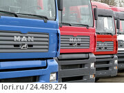"Купить «Factory building, truck, ""ONE"", park, side by side, detail, Europe, Bavaria, Upper Bavaria, Dachau, one truck production, delivery hall, Lkw's, vehicles...», фото № 24489274, снято 4 января 2006 г. (c) mauritius images / Фотобанк Лори"