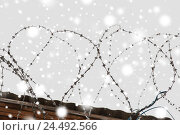 Купить «barb wire fence over gray sky and snow», фото № 24492566, снято 30 сентября 2015 г. (c) Syda Productions / Фотобанк Лори