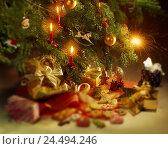 Купить «Christmas tree, detail, presents, biscuits, blur, Christmas tree, Christmas tree decorations, candles, Christmas tree candles, burn, mood, atmospheric...», фото № 24494246, снято 9 ноября 2005 г. (c) mauritius images / Фотобанк Лори