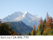 Купить «Germany, Bavaria, mountain landscape, Wetterstein Range, wood, trees, autumn, Upper Bavaria, Werdenfels, scenery, nature, Idyll, mountains, mountains,...», фото № 24496770, снято 29 февраля 2008 г. (c) mauritius images / Фотобанк Лори