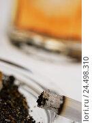 Купить «Ashtray, cigarette, whisky glass, detail, blur,», фото № 24498310, снято 7 апреля 2009 г. (c) mauritius images / Фотобанк Лори