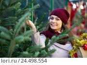 Купить «Woman choosing New Year's tree in fair», фото № 24498554, снято 27 января 2020 г. (c) Яков Филимонов / Фотобанк Лори