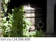 Купить «Argentina, Buenos Aires, Cementerio de la Recoleta, crypt, coffin, detail,», фото № 24506606, снято 22 июля 2009 г. (c) mauritius images / Фотобанк Лори