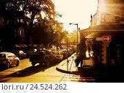 Купить «South, Africa, west cape, Stellenbosch, town view, street scene, evening sun, back light, town, street, retail shops, buildings, houses, Victorian, historically...», фото № 24524262, снято 9 февраля 2009 г. (c) mauritius images / Фотобанк Лори