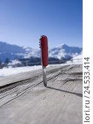 Купить «Switzerland, Graubuenden, 'Val Müstair', 'Swiss penknife', wooden table,», фото № 24533414, снято 4 апреля 2008 г. (c) mauritius images / Фотобанк Лори