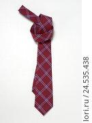Купить «Tie,», фото № 24535438, снято 20 ноября 2018 г. (c) mauritius images / Фотобанк Лори
