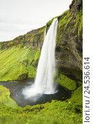 Купить «Iceland, river Seljalandsa, waterfall Seljalandsfoss,», фото № 24536614, снято 20 марта 2019 г. (c) mauritius images / Фотобанк Лори
