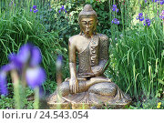 Купить «Buddha's figure, garden, irises,», фото № 24543054, снято 20 апреля 2018 г. (c) mauritius images / Фотобанк Лори