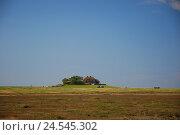 Купить «Germany, Schleswig - Holstein, north frieze country, Hallig south case, bird's breeding station Japsand,», фото № 24545302, снято 29 сентября 2009 г. (c) mauritius images / Фотобанк Лори