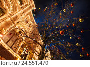 Купить «Decorated tree against the GUM building in Moscow», фото № 24551470, снято 21 декабря 2015 г. (c) Сергей Новиков / Фотобанк Лори