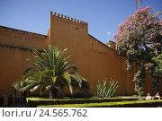 Купить «Spain, Andalusia, Seville, king's palace Alcazar,», фото № 24565762, снято 4 мая 2011 г. (c) mauritius images / Фотобанк Лори