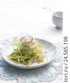 Купить «Plate, Friseesalat with goat's cheese, hors-d'oeuvre, food, vegetarian, salad, Frisee salad, salad, goat's cheese, pear malice, cheese, mustard, Food,...», фото № 24585198, снято 7 апреля 2009 г. (c) mauritius images / Фотобанк Лори