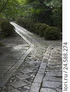 Купить «Away, paving-stones, bezel, bushes, trees, grey, green, Japan, Kyoto,», фото № 24588274, снято 16 ноября 2007 г. (c) mauritius images / Фотобанк Лори