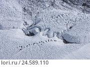 Купить «Switzerland, Valais, Cerium-weakly, Gornergrat, Gornergletscher, glacier brook,», фото № 24589110, снято 28 октября 2008 г. (c) mauritius images / Фотобанк Лори