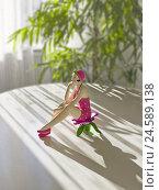 Купить «Ceramics figure, decoration, woman, seated, figure, ceramics, table, flat, green plant, light, brightly, sunlight, table appointments, indoor plant, shade...», фото № 24589138, снято 22 января 2009 г. (c) mauritius images / Фотобанк Лори