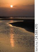 Купить «Golf Oman, sundown, sultanate, evening mood, evening, the sun, monarchy, coast, beach, sandy beach, waters, reflexion,», фото № 24589470, снято 15 ноября 2010 г. (c) mauritius images / Фотобанк Лори