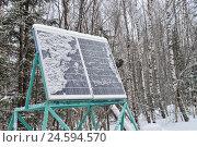 Купить «Панели солнечных батарей под снегом в зимнем лесу», фото № 24594570, снято 6 июня 2020 г. (c) Сергей Дорошенко / Фотобанк Лори