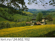 Купить «Germany, Baden-Wurttemberg, St. Peter, local view, spring, Black Forest, mountain landscape, houses, residential houses, farm, scenery, nature, rest, silence, Idyll, season, rurally,», фото № 24602102, снято 20 декабря 2007 г. (c) mauritius images / Фотобанк Лори