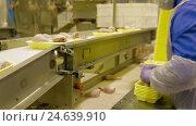 Купить «Poultry meat during production process», видеоролик № 24639910, снято 30 сентября 2016 г. (c) Илья Насакин / Фотобанк Лори