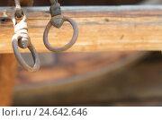 Купить «two smith-iron eyes, suspended,», фото № 24642646, снято 22 ноября 2010 г. (c) mauritius images / Фотобанк Лори