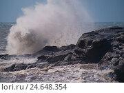 Купить «Scotland, surf, cliffs, wave, spray,», фото № 24648354, снято 16 августа 2018 г. (c) mauritius images / Фотобанк Лори