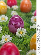 Купить «Easter, Easter eggs, brightly, flower meadow, medium close-up,», фото № 24656210, снято 24 мая 2018 г. (c) mauritius images / Фотобанк Лори