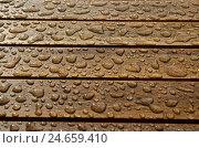 Купить «Woodwork, raindrop, medium close-up,», фото № 24659410, снято 22 июля 2018 г. (c) mauritius images / Фотобанк Лори