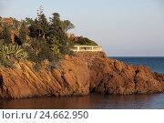 Купить «France, Cote d'Azur, coast in 'Massif del Esterel' to the south Cannes,», фото № 24662950, снято 15 февраля 2009 г. (c) mauritius images / Фотобанк Лори