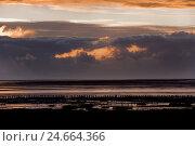 Купить «Schleswig - Holstein, North Sea coast, sundown,», фото № 24664366, снято 22 августа 2018 г. (c) mauritius images / Фотобанк Лори