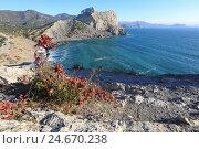 Купить «Красивый осенний крымский пейзаж», эксклюзивное фото № 24670238, снято 25 октября 2016 г. (c) Яна Королёва / Фотобанк Лори