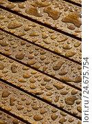 Купить «wooden, raindrop, medium close-up,», фото № 24675754, снято 15 мая 2011 г. (c) mauritius images / Фотобанк Лори