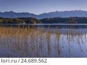 Купить «Germany, Bavaria, Upper Bavaria, priest's angle, Uffing in the series lake, series lakeside against Estergebirge,», фото № 24689562, снято 23 июля 2018 г. (c) mauritius images / Фотобанк Лори