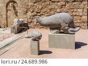 Купить «Древний каменный дельфин-мама и дельфин-ребёнок. Артефакт археологического музея. Родос, Греция.», фото № 24689986, снято 23 августа 2015 г. (c) Устенко Владимир Александрович / Фотобанк Лори
