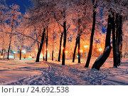 Купить «Winter night landscape with snowfall», фото № 24692538, снято 26 июня 2019 г. (c) Зезелина Марина / Фотобанк Лори