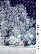 Winter night landscape - bench under winter trees with snowfall, фото № 24692610, снято 19 января 2017 г. (c) Зезелина Марина / Фотобанк Лори