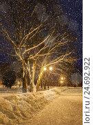 Winter night landscape with falling snowflakes, фото № 24692922, снято 19 января 2017 г. (c) Зезелина Марина / Фотобанк Лори